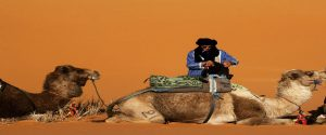 Morocco North South Tour Tangier 11 Days